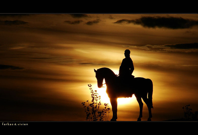 Magányos lovas a naplementében
